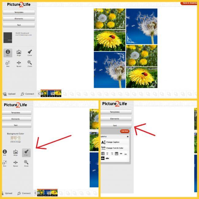 Создание коллажа в Picture2life: коллаж из пяти фото, добавление фона и текста
