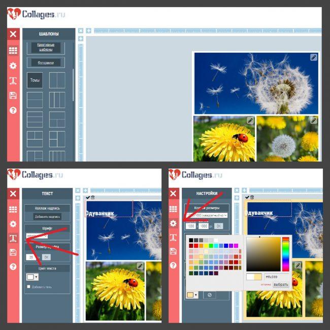 оздание фото в MyCollages: подборка шрифта, изменение цвета фона