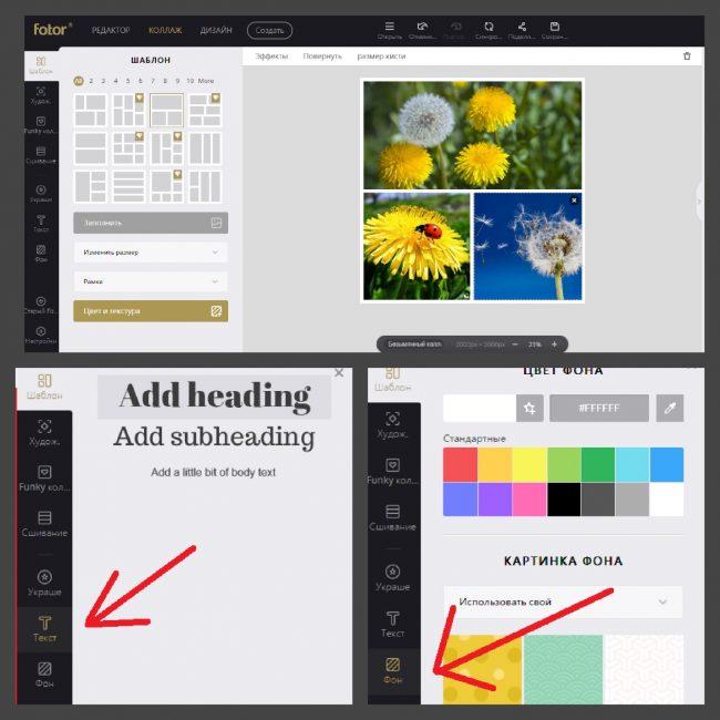 Создание фото в Fotor: настройка шрифта и фона
