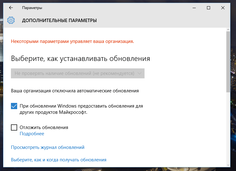 Окно дополнительных параметров, если обновления отключены