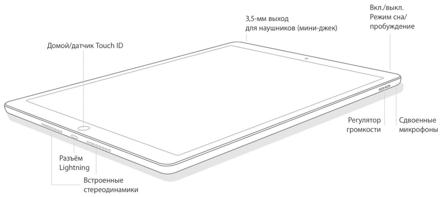 Расположение кнопок на iPad mini 4