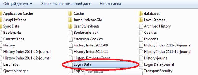 Файл с паролями от браузера Яндекс