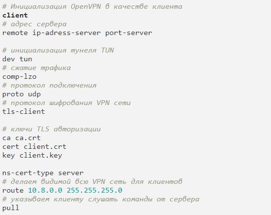 Содержимое файла client.ovpn