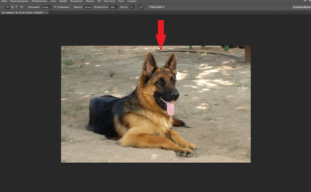 Пример выделения объекта с частью фона