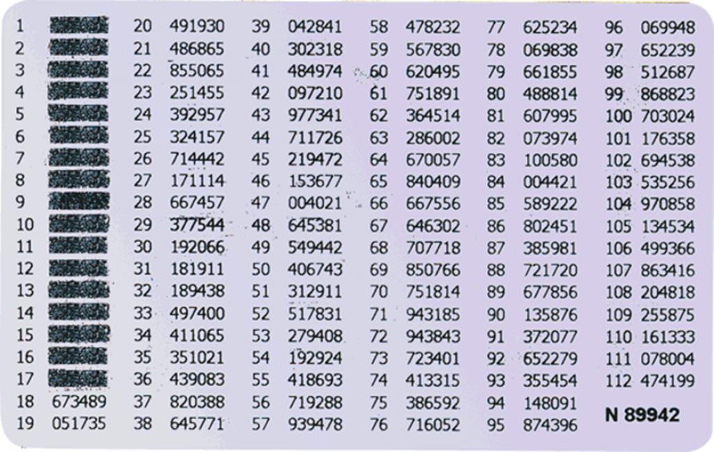 Вид распечатки одноразовых кодов