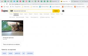 8 Способов — Поиск по Картинке с Телефона в (Yandex & Google) | +Альтернативные варианты