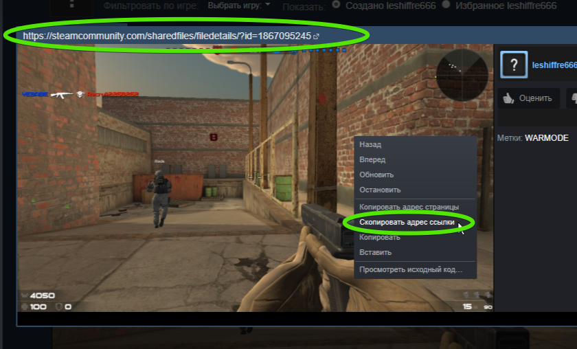 Инструкция: как быстро найти раздел, где хранятся скриншоты Стим