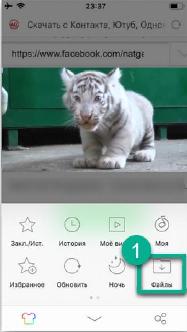 Как скачать видео из интернета на телефон с Андроид