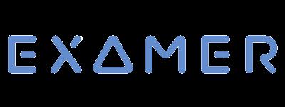 Examer logo