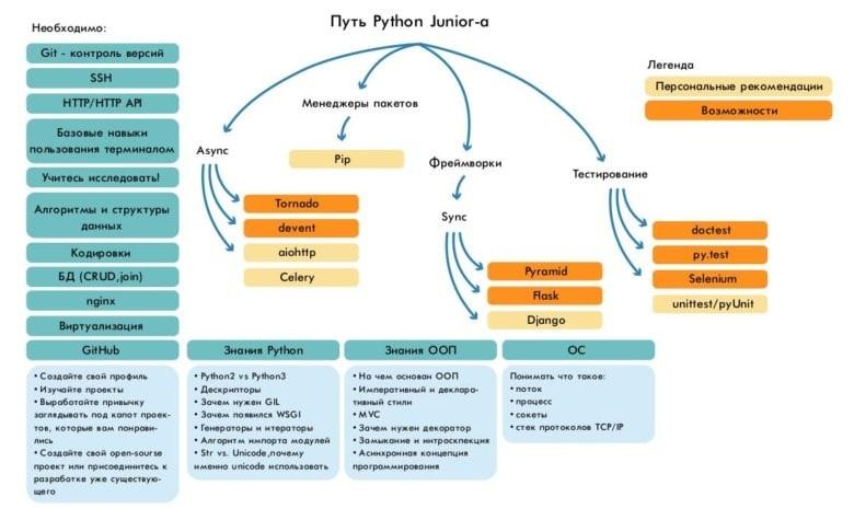 Ваш круг обязанностей и нужные скиллы на должности разработчика на Python будут зависеть от конкретной вакансии, политики компании и сферы, в которой вы будете строить карьеру