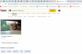 Поиск по Картинке с Телефона в Yandex & Google (Яндекс, Гугл) — 8 Способов