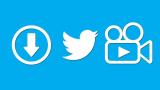 Как скачать видео с Твиттера (Twitter) за одну минуту   ТОП-3 Простых способа